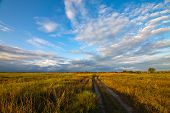 picture of paysage  - Autumn landscape with green and yellow grass road and clouds - JPG