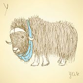 foto of yaks  - Sketch fancy yak in vintage style vector - JPG