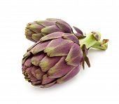 foto of purple white  - Two ripe purple artichokes - JPG