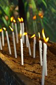 image of cemetery  - Candles on tomb at cemetery  - JPG