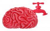 pic of spigot  - Brain drain - JPG