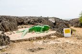 picture of lizards  - A green statue of a lizard among black coral rocks on a beach on Curacao - JPG