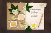 image of ingredient  - Elderflower champagne ingredients with old pen over natural hemp notebook and lokta paper background - JPG