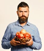 Guy Presents Homegrown Harvest. Man With Beard Holds Wicker Bowl With Fruit Isolated On White Backgr poster