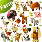 stock photo of wild donkey  - big set of farm animals - JPG