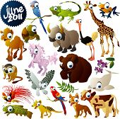 image of bird paradise  - extra big vector animals set - JPG