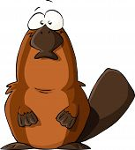 image of platypus  - Platypus on a white background vector illustration - JPG