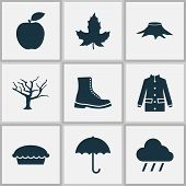 Seasonal Icons Set With Maple, Rain, Apple Pie And Other Apple Elements. Isolated  Illustration Seas poster