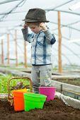 Small Farmer Boy. Small Farmer Boy Working In Greenhouse. Small Farmer Boy In Fashion Hat. Garden Wo poster