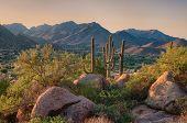 Saguaro Cactus Grow On Pinnacle Peak Which Is A Desert Hiking Park In Scottsdale Arizona. poster