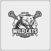Lacrosse Club Emblem With Wild Cat Head. Vector. poster