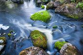 Small Stream In Mixed Forest Finland Nature poster