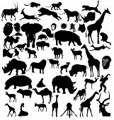 stock photo of animal silhouette  - Big set of African and tropical animals - JPG