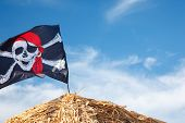 A Skull And Crossbones Pirate Flag Waving In The Wind., Jolly Roger, Pirates Flag. poster