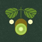 Kiwi Illustration. Ripe Cut Kiwi With Leaves And Flowers On Shabby Background. Symmetrical Flat Comp poster