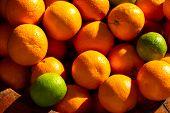 Healthy Fruits, Orange Fruits Background Many Orange Fruits - Orange Fruit Background poster