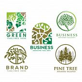 Green Tree With Leaves Logo. Herbal Leaf Circle, Ecology, Natural, Organic Label Or Logo, Tree Vecto poster