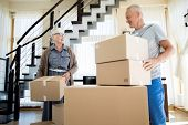 Portrait of happy senior couple packing cardboard boxes while moving to new house poster