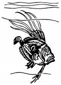 foto of dory  - Fish John Dory swimming in the water - JPG