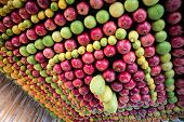 pic of sukkot  - Sukkot festive celebration of the Samaritan community - JPG