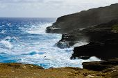 Rocky coast of Oahu