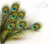 stock photo of fern  - Cute vector background with green peacock ferns on white - JPG