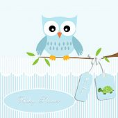 Постер, плакат: baby shower card boy owl and stripe turtle