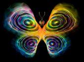 Постер, плакат: Butterfly Design