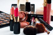 foto of blush  - Professional makeup set - JPG