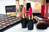 picture of blush  - Professional makeup set - JPG