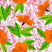 foto of florida-orange  - Vector seamless pattern with tropical decor - JPG