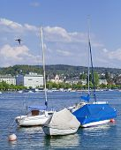 stock photo of zurich  - Lake Zurich in spring - JPG