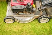 foto of grass-cutter  - Close up view of lawnmower with its front wheel in focus cutting green grass in yard or garden - JPG