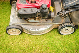 stock photo of grass-cutter  - Close up view of lawnmower with its front wheel in focus cutting green grass in yard or garden - JPG