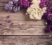 image of lilac bush  - The beautiful lilac on a wooden background - JPG