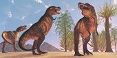 picture of tyrannosaurus  - Tyrannosaurus Rex dinosaurs have a growling session in the Cretaceous Period - JPG