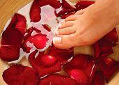 foto of wet feet  - Feet Spa - JPG