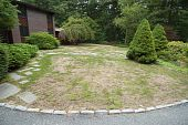 image of grub  - lawn in front yard either burnt by lack of water - JPG