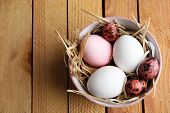 stock photo of bird egg  - Bird colorful eggs in bowl on wooden background - JPG