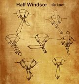picture of tied  - Vector tie and knot vintage instruction - JPG