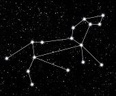 foto of leo  - constellation Leo against the starry sky - JPG