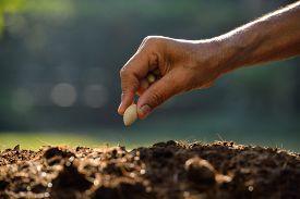 picture of farmer  - Farmer - JPG