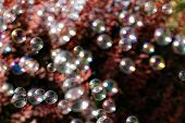 image of blowers  - The rainbow bubbles from the bubble blower - JPG