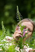 stock photo of willow  - woman gathering leaves and flowers of willow - JPG