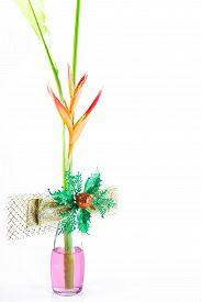 foto of heliconia  - Beautiful Heliconia flower blooming Gold bow tie on isolate white background - JPG