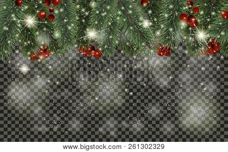 Detailed Christmas Tree Branches And Christmas Berry On Transparent