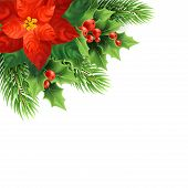 Red Poinsettia Flower Realistic Illustration. Mistletoe, Red Berries And Fir Branches Christmas Deco poster