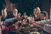Noel Evening Family Gathering, Meeting, Congrats. Cheerful Grey-haired Grandparents, Grandchildren,  poster