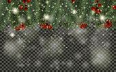 Detailed Christmas Tree Branches And Christmas Berry On Transparent Background. Christmas Decoration poster