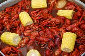 stock photo of crawdads  - Crawfish from a Louisiana Cookout - JPG